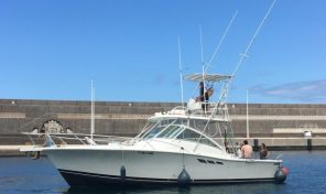 Luhrs 36 Open Fisher